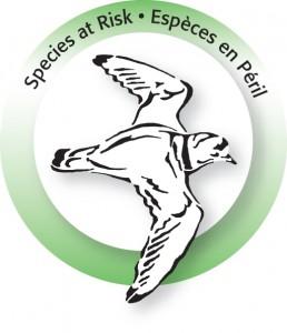 SAR_EEP_logo