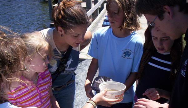 Some children looking at a specimen