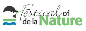 Festival_colour