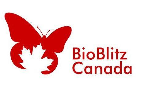 BioBlitz Canada