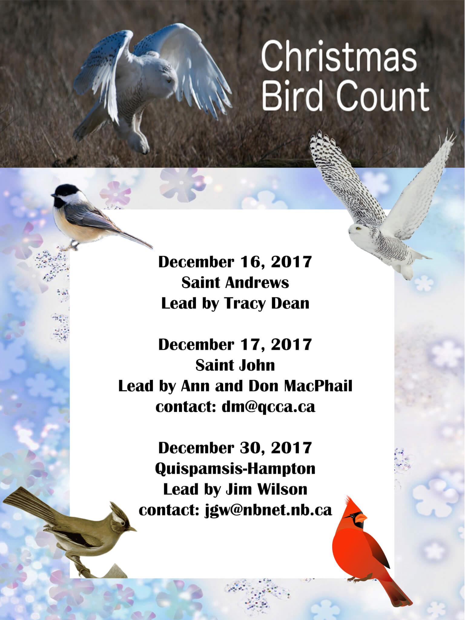 Christmas Bird Count 2018 | Nature NB