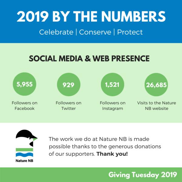 Giving Tuesday - Social Media 2019